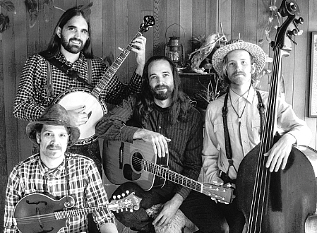Tishomingo String Band